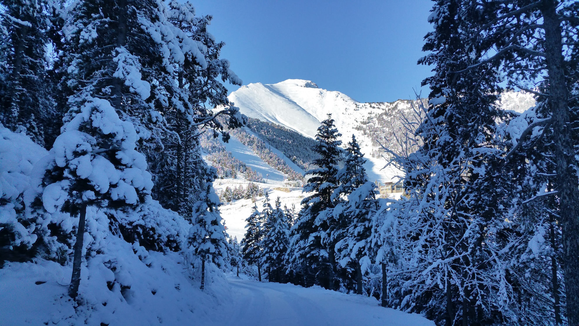 Pallars Sostenibilitat
